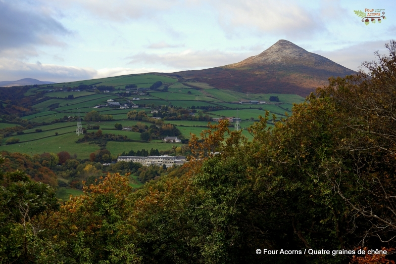 Great-Sugar-Loaf-Wicklow-autumn