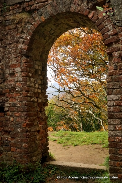 Octagon-door-ruins-Wicklow-autumn