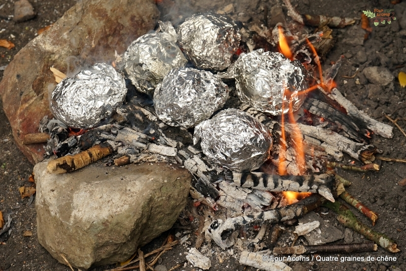 tinfoil-apples-camp-fire-embers-outdoors