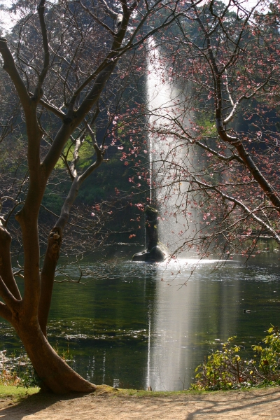 Powerscourt-gardens-pond-fountain-spring