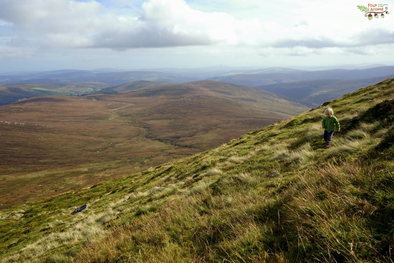child-walking-mountainside-wicklow-ireland