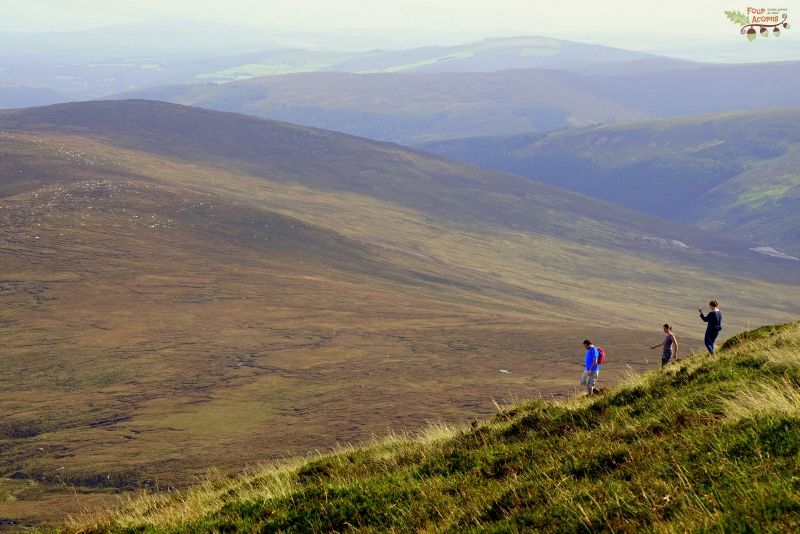 hikers-hiking-wicklow-mountains-ireland
