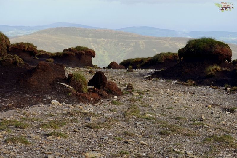 peat-hags-erosion-tonelagee-wicklow-mountains-ireland