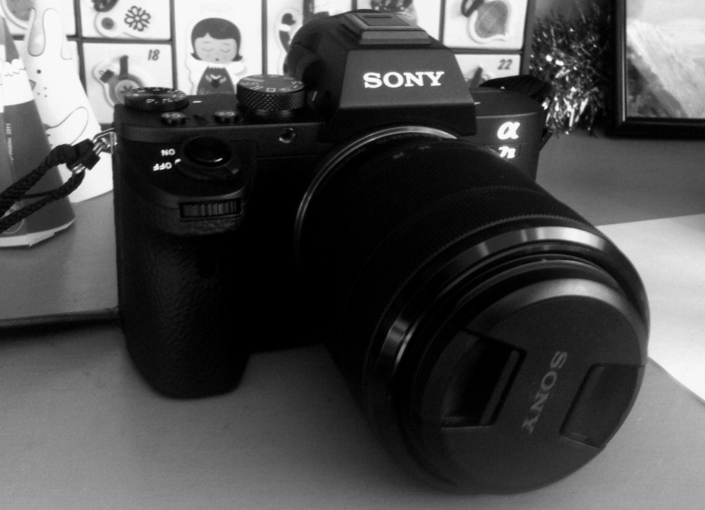 My new camera / Mon nouvel appareil photo