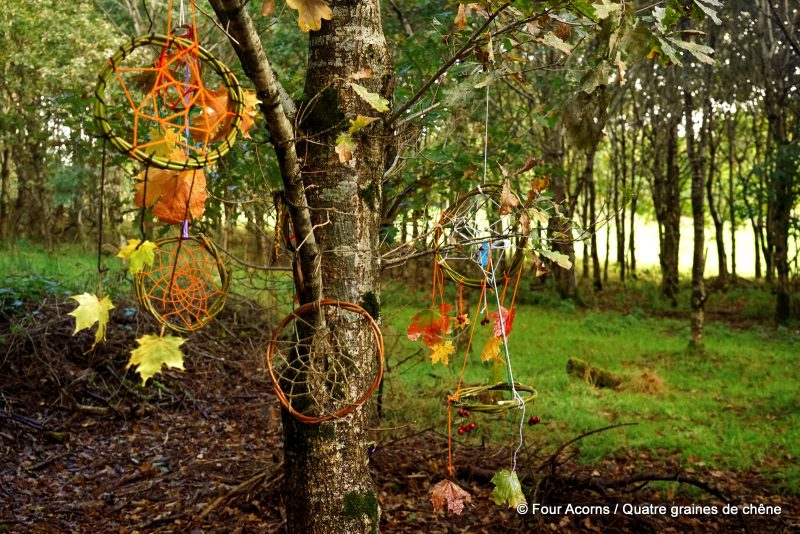autumn-bushcraft-wild-nature-crafts -dreamcatcher