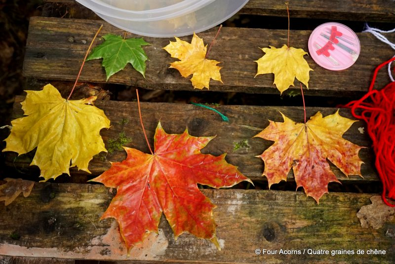 autumn-leaves-wild-nature-crafts