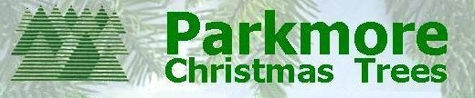 parkmore-christmas-trees-001