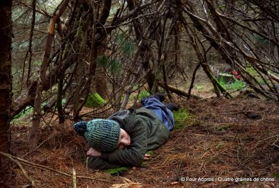 nature, bushcraft, den, cabane, wild, outdoors, forest