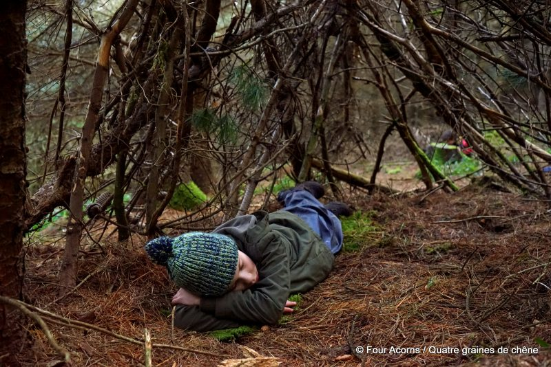 nature, bushcraft, den, cabane, wild, outdoors, forest, woodland, woods, child
