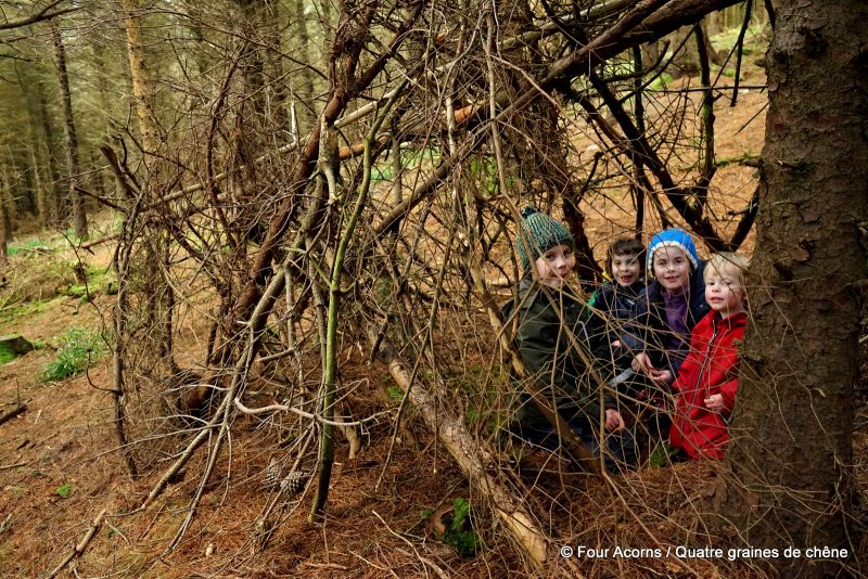 nature, bushcraft, den, cabane, wild, outdoors, forest, woodland, woods