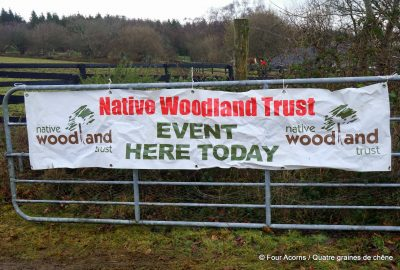 Native Woodland Trust, tree planting event, Ireland, Wicklow, Laragh, oak, tree