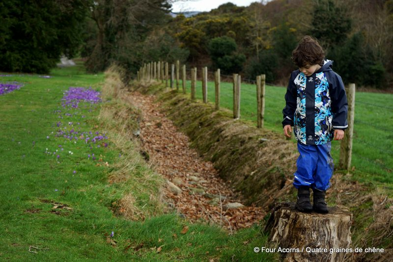 Kilmacurragh, Wicklow, Ireland, Irlande, botanic garden, jardin botanique, free-range kids