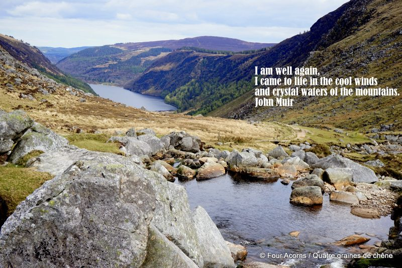 outdoors-nature-hiking-Ireland-Glendalough