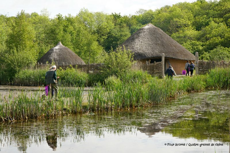 IFSA-Irish-Forest-School-Association crannog-Irish-National-Heritage-Park