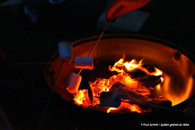 midsummer, camping, Silverstrand, Wicklow, Ireland, Irish Sea, solstice, Irlande, mer d'Irlande, camp fire, feu de camp, s'mores