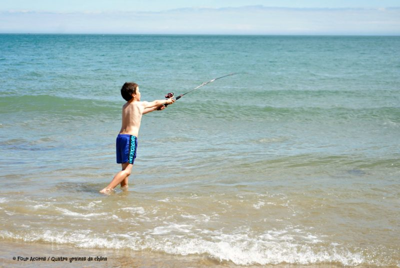 Silverstrand, beach, Wicklow, Ireland, Irish Sea, mer d'Irlande, Irlande, plage, fishing