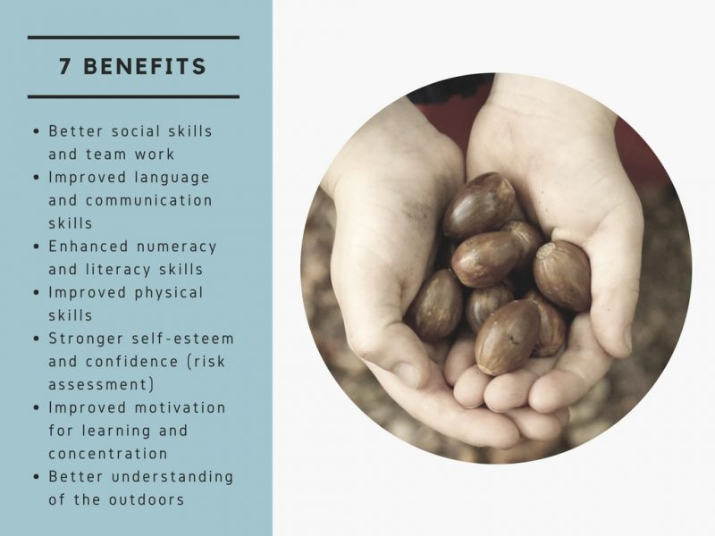 outdoor-learning-benefits-hands-hazelnuts