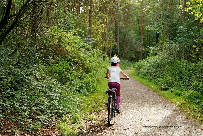girl-cycling-bike-greenway-forest-Wicklow