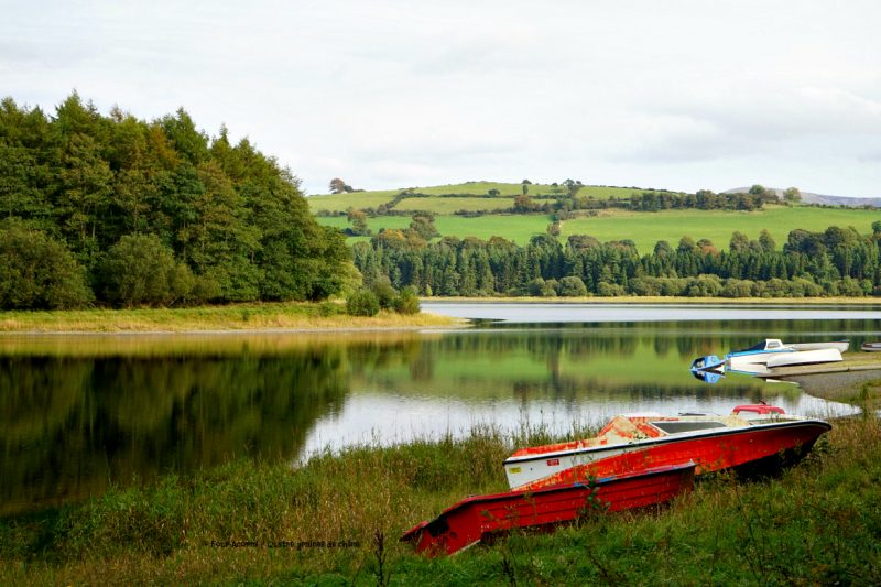 BLessington-lake-Wicklow-boats