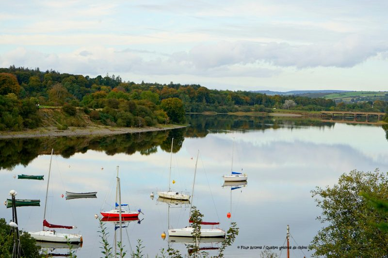 boats-Blessington-lake-bridge-AvonRi-Wicklow