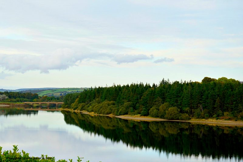 Blessington-lake-AvonRi-bridge-Wicklow