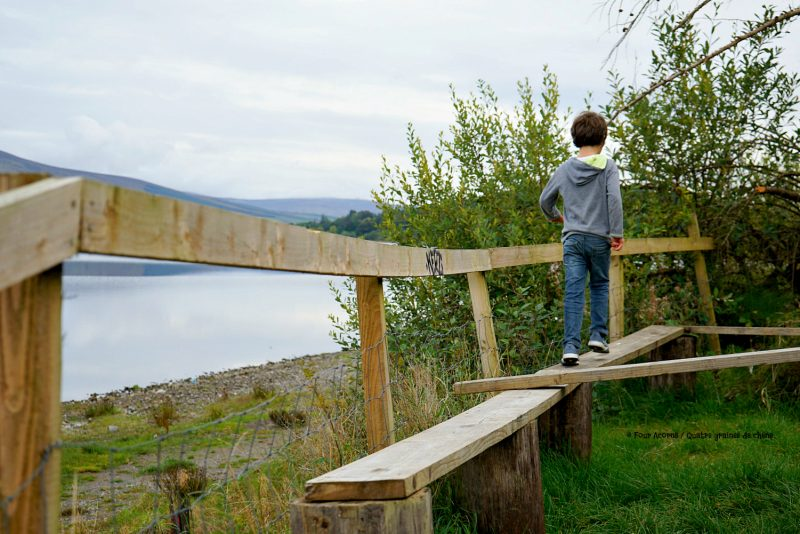 boy-walking-plank-Blessington-lake-AvonRi