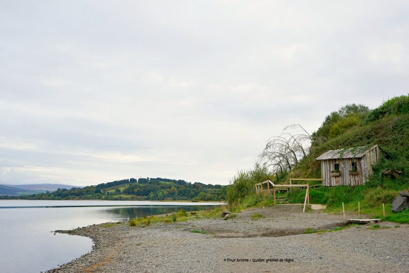 Blessington-lake-AvonRi-hut-cabin-beach-Wicklow