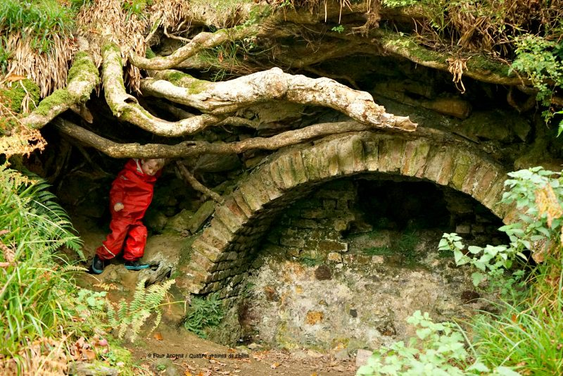 stone-archway-child-tree-roots