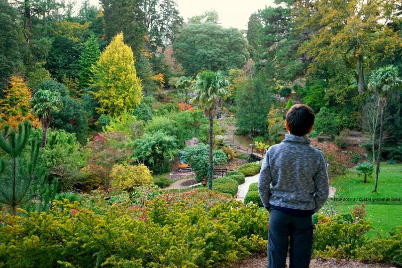 boy-japanese-garden-powerscourt-wicklow