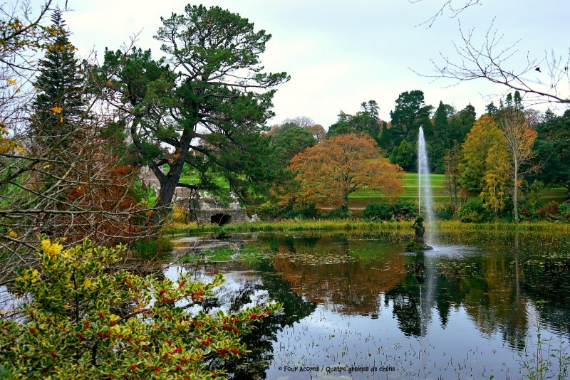 powerscourt-triton-lake-reflection-autumn-colours