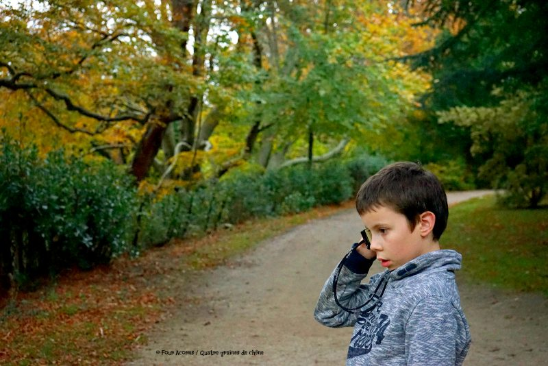 boy-audioguide-powerscourt-autumn-colours