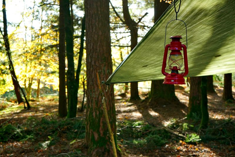 red-lantern-tarp-camping-forest