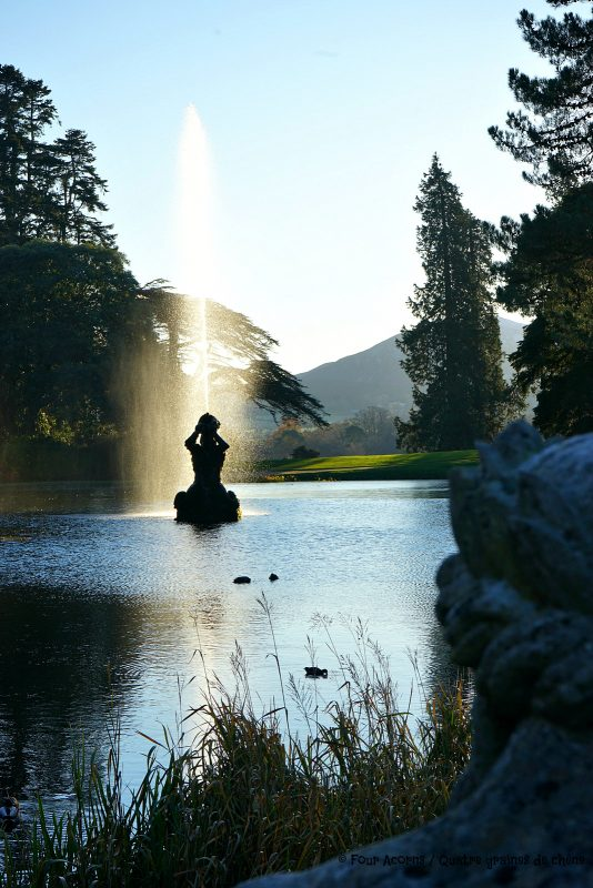 powerscourt-gardens-main-pond-winter-sunshine-frost