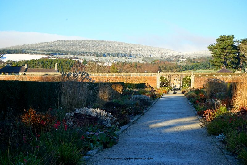 powerscourt-walled-garden-snow-mountain-winter-sunshine