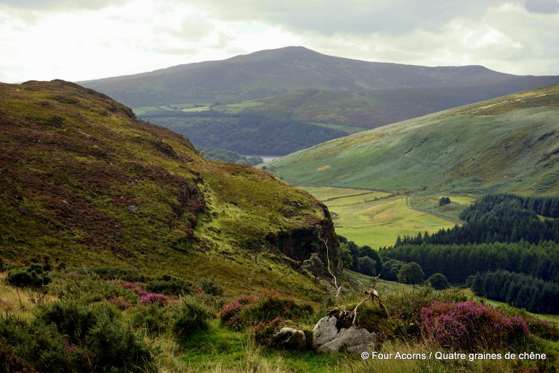 wicklow-mountains-ireland-luggala-lough-dan