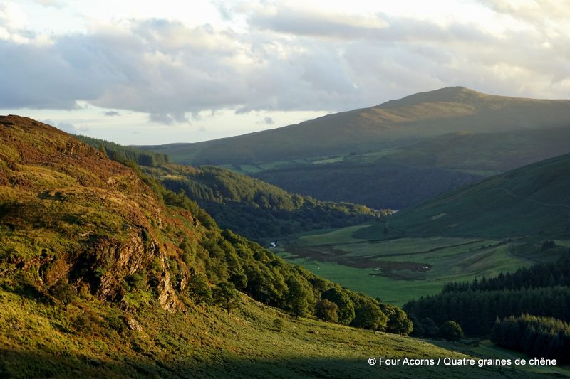 luggala-valley-wicklow-mountains-ireland