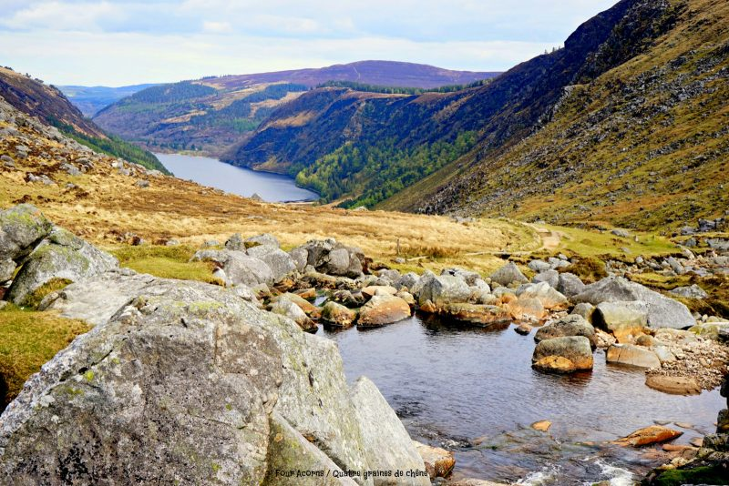 Glenealo, Glendalough, Upper Lake, Wicklow, Wicklow Mountains National Park, hiking, Ireland
