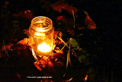 tealight-jar-autumn-leaves-grass-blades-dark