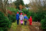 four-children-santa-hats-christmas-tree-farm-walk-down-lane