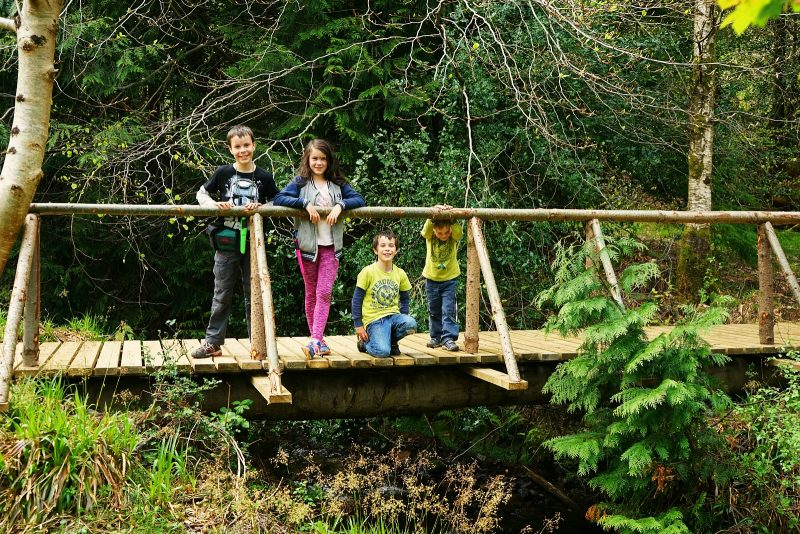 wooden-footbridge-four-children-wicklow-ireland