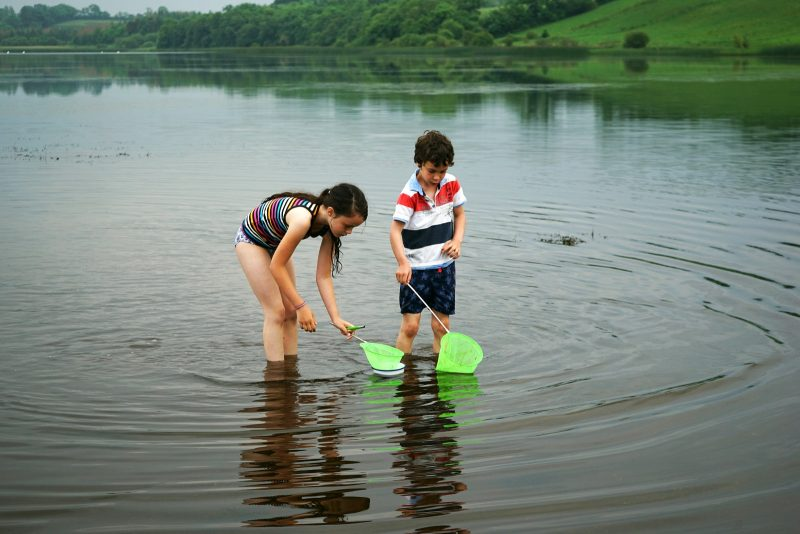 lough-oughter-children-pond-dipping-row-campsite