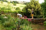 two-children-garden-wall-crawling-standing-France-summer