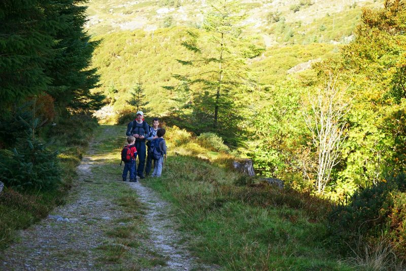 glenmalure-father-tree-sons-hiking-trail-wicklow-ireland