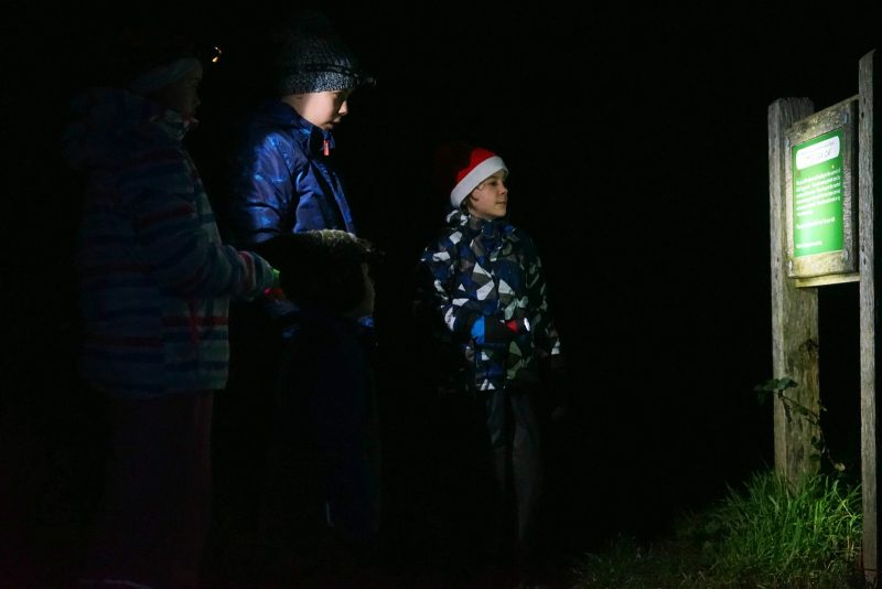 four-children-night-hike-head-torches-wicklow