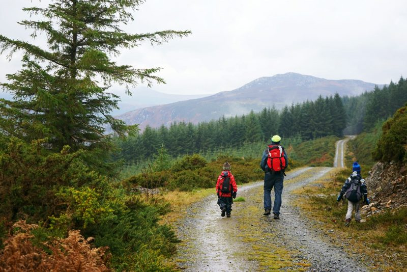 father-sons-walking-wicklow-way-ireland