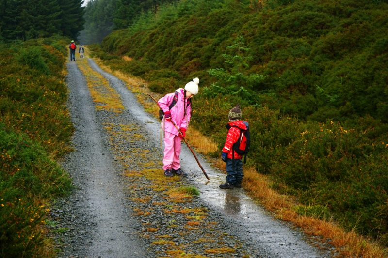children-play-puddle-stick-wicklow-way-ireland