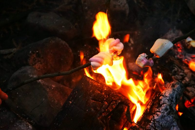 marshmallow-toasting-campfire-flames