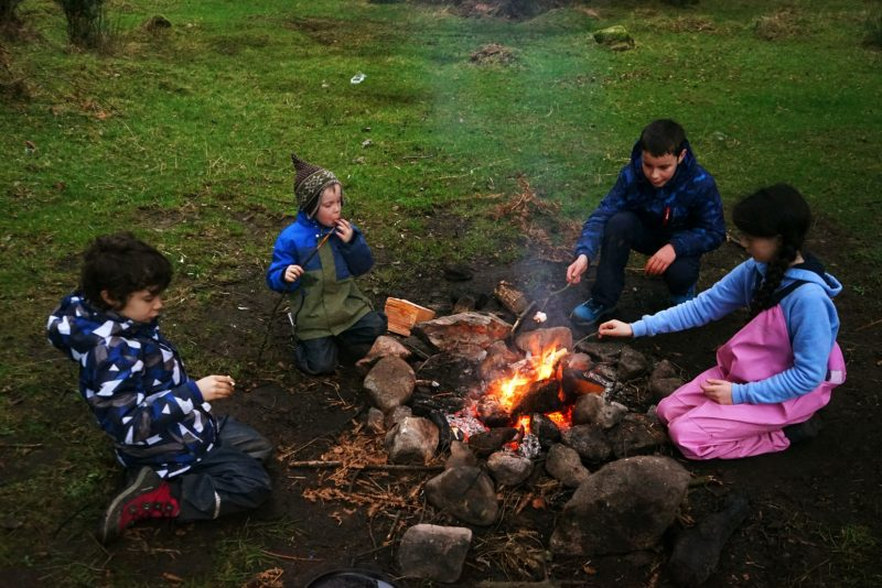 marshmallow-toasting-campfire-winter