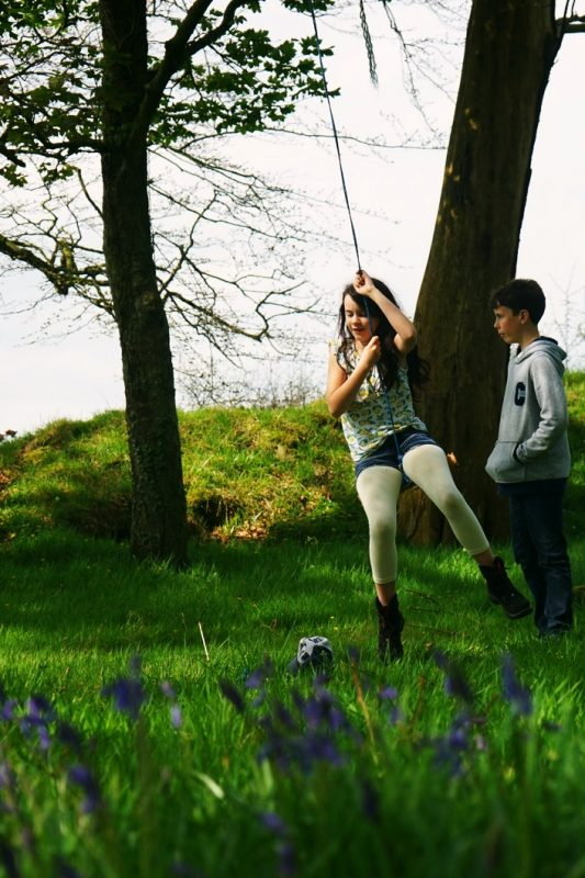urney-fort-tyrone-northern-ireland-bluebells-swing